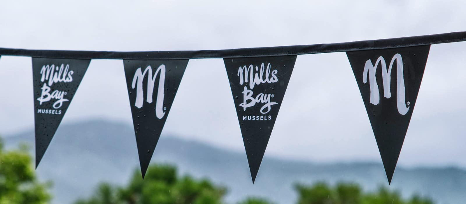 Mills Bay Mussels bunting