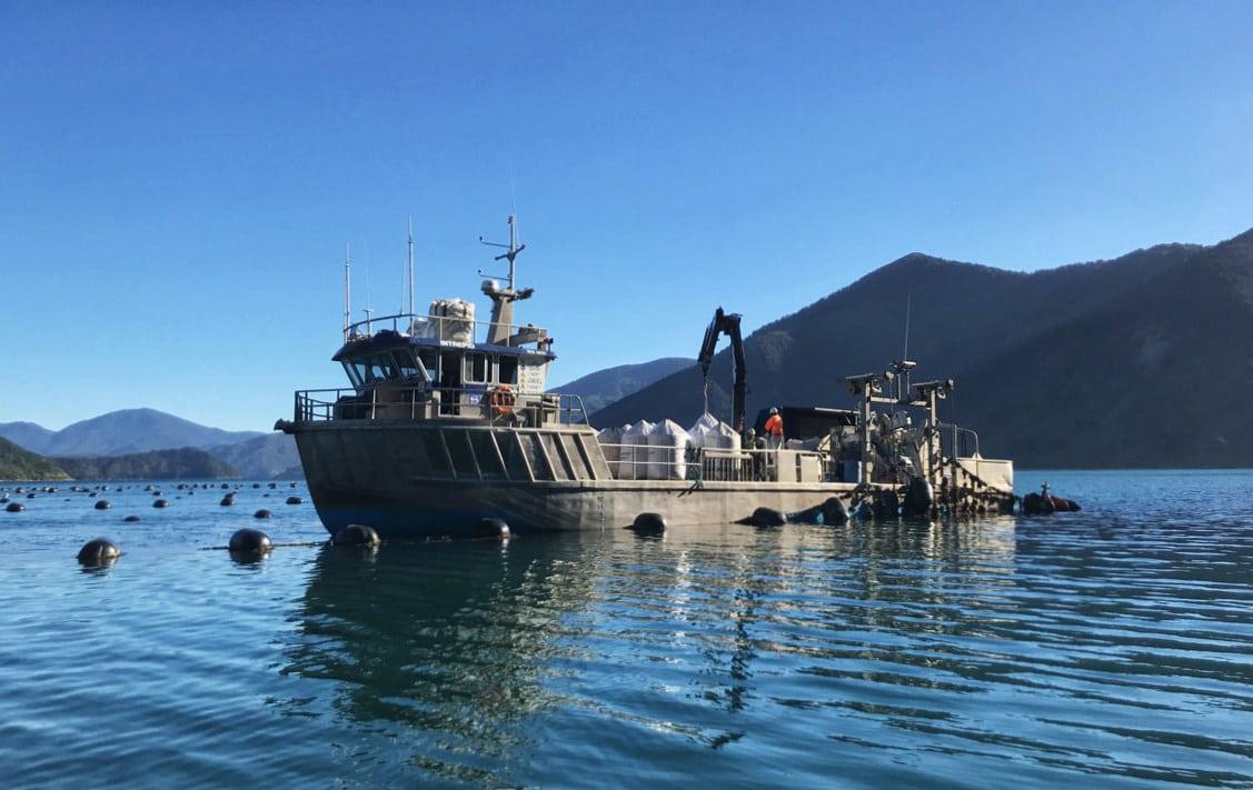 Mills Bay mussel harvesting boat