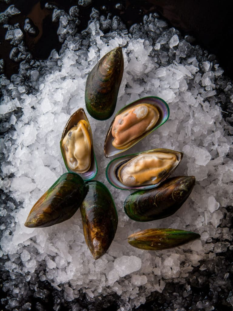 Fresh half shell mussels on ice